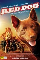红犬/Red Dog(2011)
