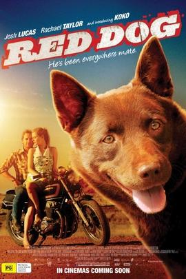 红犬( 2011 )