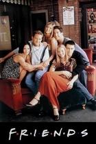 老友记/Friends (1994)
