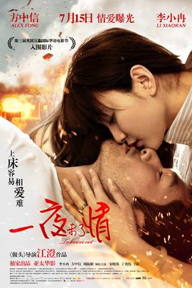 一夜未了情( 2011 )