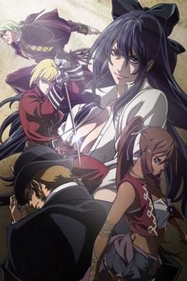 战斗司书( 2009 )