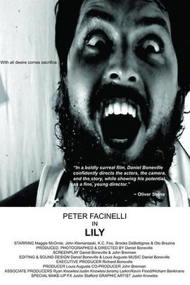 莉莉( 2007 )
