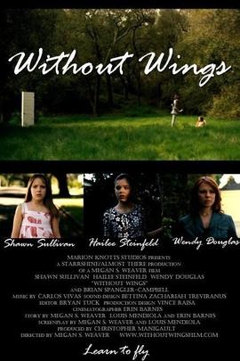 没有翅膀( 2010 )
