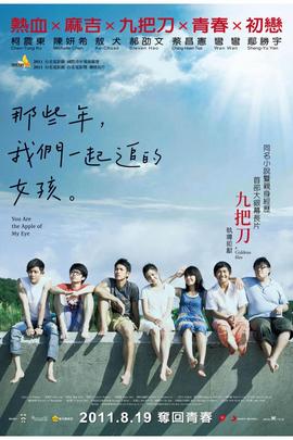 那些年,我们一起追的女孩( 2011 )