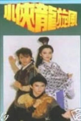 小侠龙旋风( 1990 )