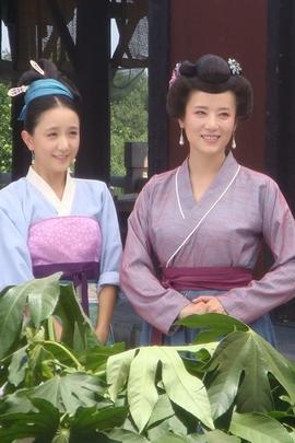 梦回唐朝( 2011 )