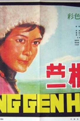 蒙根花( 1978 )