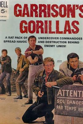 加里森敢死队( 1967 )