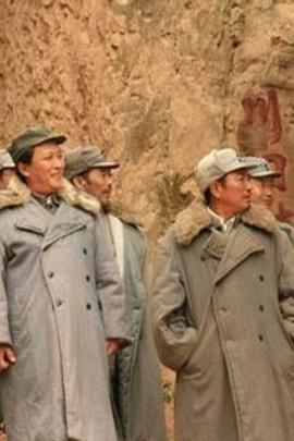 保卫延安( 2009 )