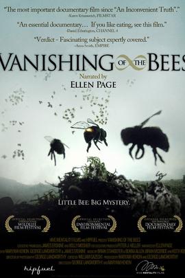 消失的蜜蜂( 2009 )