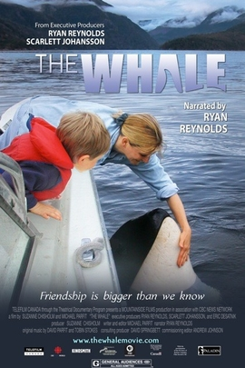 鲸鱼( 2011 )