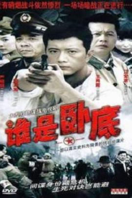 谁是卧底( 2006 )