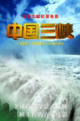 中国三峡( 2011 )