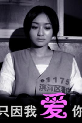 只因我爱你( 2008 )