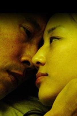 晓光( 2000 )