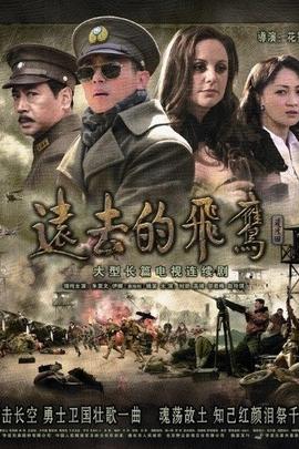 远去的飞鹰( 2011 )