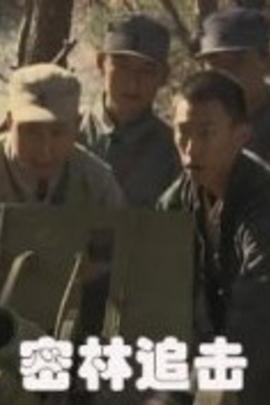 密林追击( 2011 )
