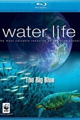 水世界( 2008 )