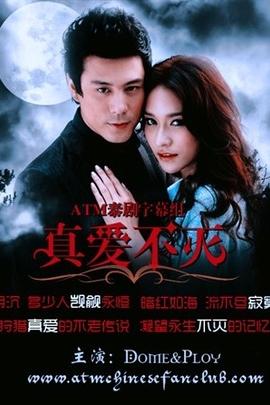 真爱不灭( 2011 )
