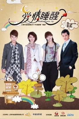 爱情睡醒了( 2011 )
