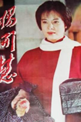 杨开慧( 1995 )