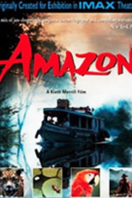 亚马逊( 1997 )