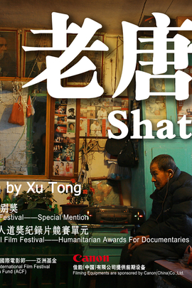 老唐头( 2011 )
