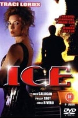 虎胆神偷( 1994 )