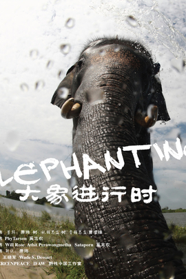 大象进行时( 2011 )