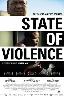 国家暴力( 2010 )