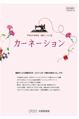 康乃馨( 2011 )