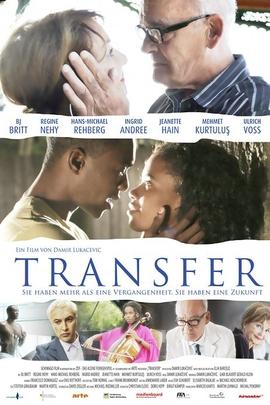 灵魂转移( 2010 )
