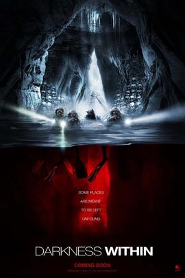 在黑暗中( 2009 )