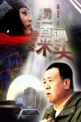 前方一百米调头( 2008 )