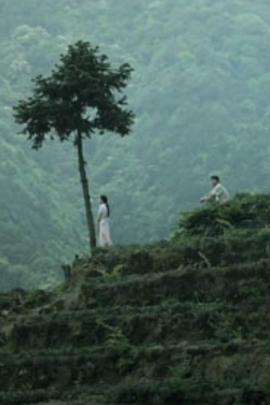 回头是远方( 2012 )