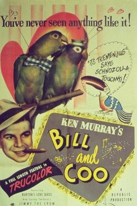 比尔和咕咕鸟