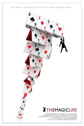 魔术生涯( 2011 )