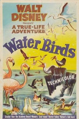 水鸟( 1952 )