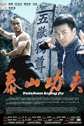 泰山功夫( 2009 )