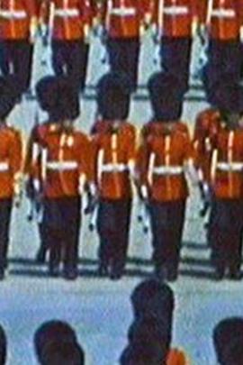 专业武器( 1983 )