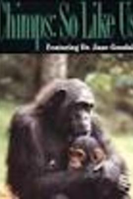 黑猩猩:像极了我们( 1990 )