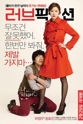 爱情小说( 2012 )