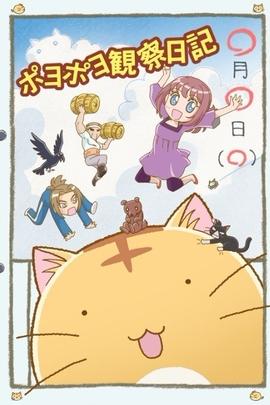 嘟嘟猫观察日记( 2012 )