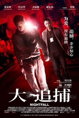 大追捕( 2012 )