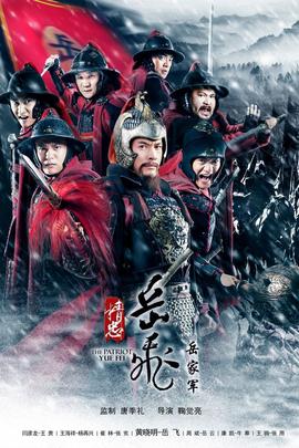 精忠岳飞( 2013 )