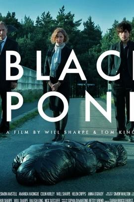 黑色池塘( 2011 )