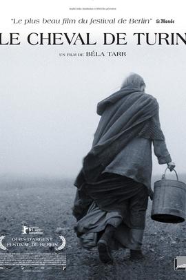 都灵之马( 2011 )