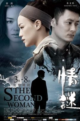 情谜( 2012 )