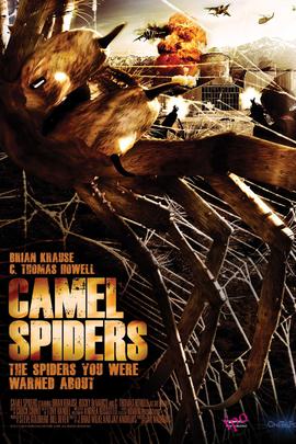 骆驼蜘蛛( 2011 )