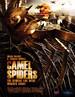 骆驼蜘蛛/Camel Spiders(2011)